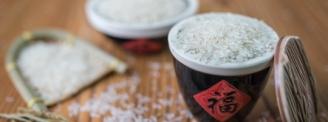 盛发粮油第三届优质稻种子洽谈会隆重召开